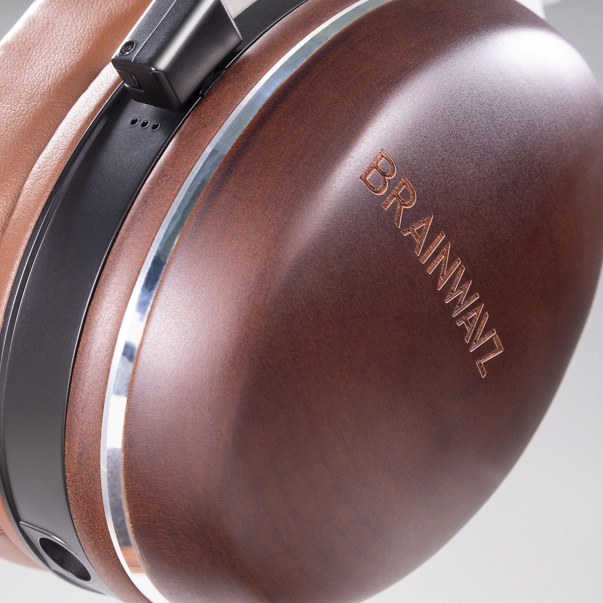 Brainwavz HM100