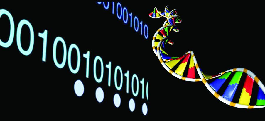 """La sequenza numerica costituita da 0 e 1 si potrebbe considerare la """"genetica"""" del segnale digitale"""