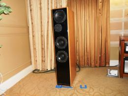 International CES 2014 | Diffusore DeVore Fidelity Gibbon X